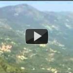 Vaquí autor dau Mont Macaron